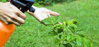 Государственный реестр пестицидов и агрохимикатов, разрешенных к использованию в УКРАИНЕ (ИНТЕРАКТИВНАЯ ВЕРСИЯ)