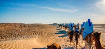 Частные гиды в Тунисе
