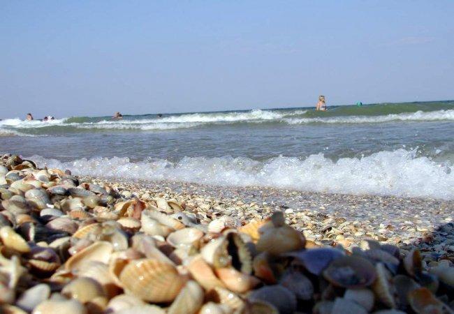 Море зовет! Пассажирские перевозки из Днепра в Бердянск